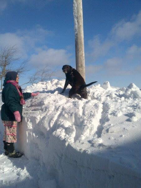 snow bank and murdoch 2015